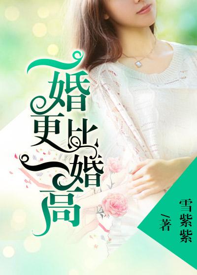 [花语书坊]雪紫紫小说《一婚更比一婚高》全本在线阅读